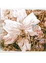 歌中之歌-下篇(10CD)